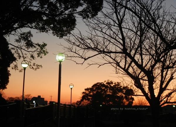 lightyuhi1-1hn.jpg