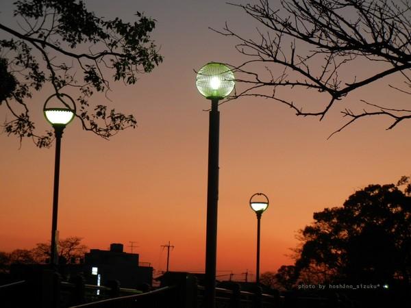 lightyuhi1-3hn.jpg